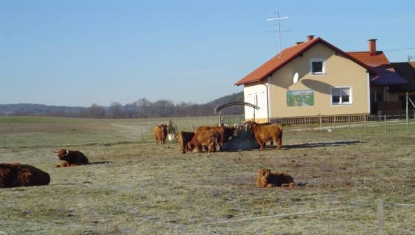 nasa_kmetija