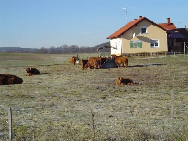 salovci_ekoloska_kmetija_rengeo_3